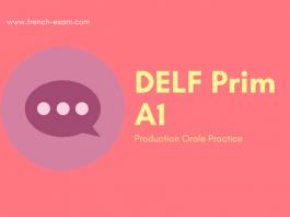 delf b2 preparation book pdf